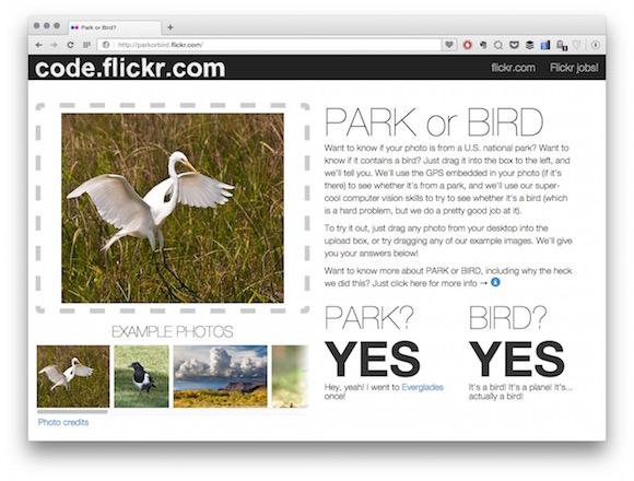 Flickr PARK or BIRD